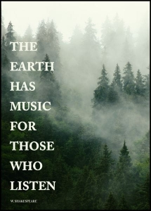 Plakat motywacyjny FOREST | The earth has music